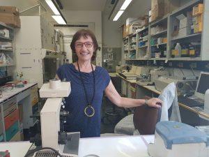 רות במעבדה