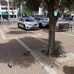 2 ניידות בכיכר