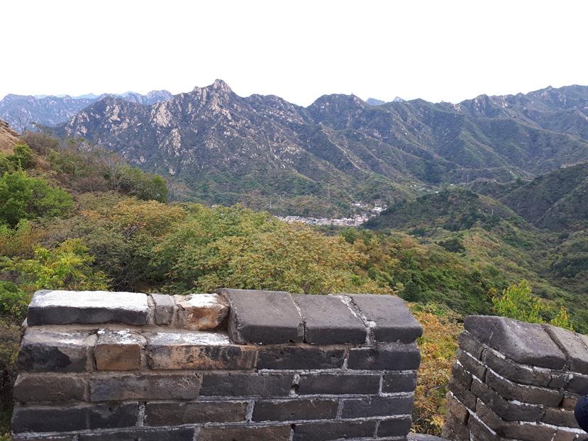 מבט מהחומה אל הסביבה