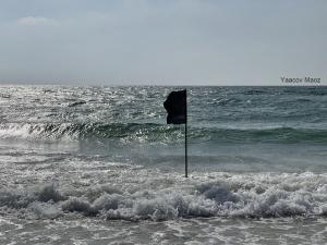 דגל על החוף